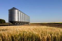 Weizenfeld u. Getreidespeicher Lizenzfreie Stockfotografie