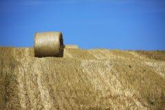 Weizenfelder in den Bergen von Deutschland, Hettigenbeuern Lizenzfreies Stockfoto