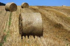 Weizenfelder in den Bergen von Deutschland, Hettigenbeuern Lizenzfreie Stockfotografie
