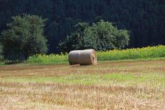 Weizenfelder in den Bergen von Deutschland, Hettigenbeuern Lizenzfreie Stockfotos