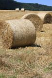 Weizenfelder in den Bergen von Deutschland, Hettigenbeuern Stockfotos