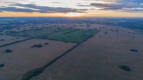 Weizenfelder Schöne Landschaft von einer Höhe in der Sonnenuntergangzeit Fotos von der Höhe Stockbild