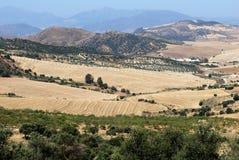 Weizenfelder und Berge, Almogia, Andalusien. Lizenzfreie Stockfotos