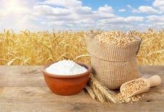 Weizenkörner und -mehl auf Tabelle Stockfoto