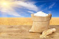 Weizenmehl im Sack auf Naturhintergrund Stockbilder