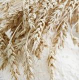 Weizenohren auf dem Mehl Lizenzfreie Stockbilder