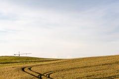 Weizenpanorama des Sommers im Freien Lizenzfreie Stockfotografie
