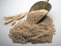 Weizenschaufel Lizenzfreie Stockfotos