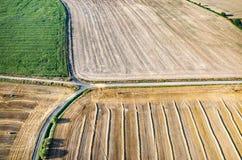 Weizenstoppel Stockbild