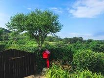 Wejście podwórze koreański wioska dom 30 target1781_1_ strażników Lipiec królewiątka Korea kumpel s Seoul południe obraz royalty free