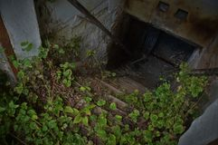Wejście zaniechany loch - horroristic scena od above obraz royalty free