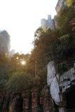 Wejścia Bailong jutrzenkowa winda w ranku, Hunan, Chiny Obrazy Stock