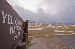 wejściowy naturalny park Roosevelt Yellowstone Zdjęcia Stock