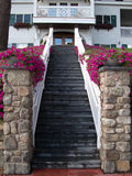 wejściowy schody Obraz Royalty Free