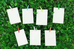 Wekelijks programma op gras met leeg document en houten kleurrijk pi Royalty-vrije Stock Afbeeldingen
