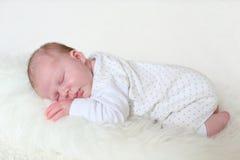 3-weken pasgeboren slaap Stock Foto