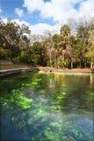 Wekiwa Springs Florida Landscape Stock Image