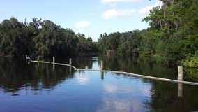 Wekiwa Springs State Park Stock Images