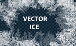 Wektorów wzory Robić Mrozowym Błękitnym zimy tłem dla Bożenarodzeniowych projektów Typograficzna etykietka dla Xmas wakacje royalty ilustracja