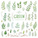 Wektor akwareli Ustaleni elementy Kolekcj gałąź i ogród tła cogwheel ilustraci odosobniony biel Zdjęcie Royalty Free