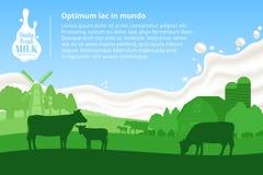 Wektor dojna ilustracja z krowami, łydkami, gospodarstwem rolnym i dojnym pluśnięciem, ilustracja wektor
