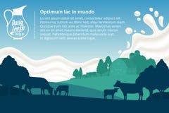Wektor dojna ilustracja z krowami, łydkami, gospodarstwem rolnym i dojnym pluśnięciem, royalty ilustracja