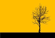 wektor drzewny Obrazy Stock