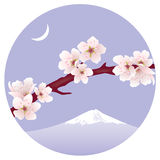 wektor gałąź Sakura (wiśnia) Obrazy Stock