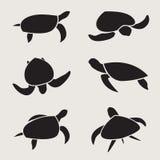 Wektor grupa żółw ilustracja wektor