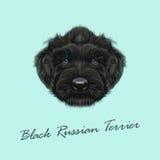 Wektor Ilustrujący portret Czarny rosjanina Terrier pies royalty ilustracja