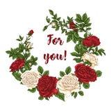 Wektor karta z ogrodowym bielem, czerwonymi różami i tulipanów kwiatami na białym tle Romantyczny projekt dla naturalnych kosmety Zdjęcie Stock