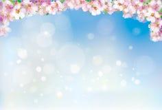 Wektor menchie, kwiecista granica na niebieskiego nieba tle, kwitnie Sakura drzewa, bokeh skutek ilustracji