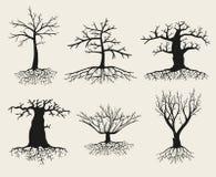 Wektor nagie drzewne sylwetki z korzeniami ilustracji