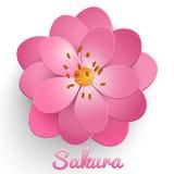 Wektor odizolowywający papieru Sakura rżnięty kwiat Kwiecisty wolumetryczny skład royalty ilustracja