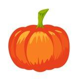 Wektor odosobniona bania Halloweenowy projekt Ilustracji