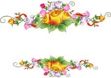 Wektor róży kwiatu rama Obraz Royalty Free