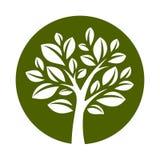 Wektor tree-21 Obraz Stock