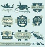 Wektor Ustawiający: Rocznik oceanografii klasy etykietki Fotografia Royalty Free
