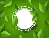 Wektor zieleni liści tła ramowy szablon Zdjęcie Royalty Free