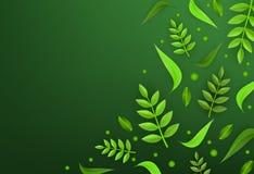 Wektor zieleni liści tła ramowy szablon Obrazy Stock