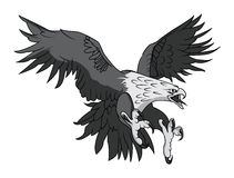 Wektorowa Łysego Eagle lub jastrzębia maskotki Kierownicza grafika royalty ilustracja