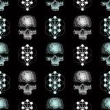 wektorowa bezszwowa deseniowa czaszka Fotografia Stock