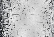 Wektorowa craquelure skutka narzuta na przejrzystym tle Marmurowa tekstura z krakingową farbą narysy Subtelny abstrakcjonistyczny royalty ilustracja
