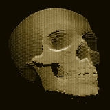 Wektorowa czaszka budująca z przypadkowymi liczbami Internetowa ochrony pojęcia ilustracja Wirusa lub malware abstrakt Obraz Stock