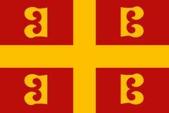Wektorowa Dziejowa flaga ilustracja wektor