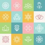 Wektorowa ekologia i organicznie logowie royalty ilustracja