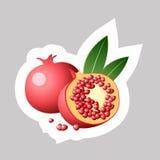 Wektorowa granatowiec ikona Royalty Ilustracja