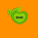 Wektorowa ikona organicznie Zdjęcie Royalty Free