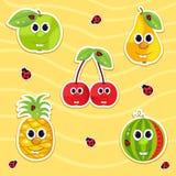 Wektorowa ikony setu owoc Zdjęcie Stock