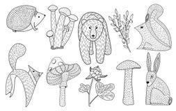 Wektorowa ilustracja śliczna ręka rysujący lasów zwierzęta, mushroo ilustracji